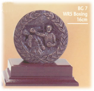 Boxing Trophy 1